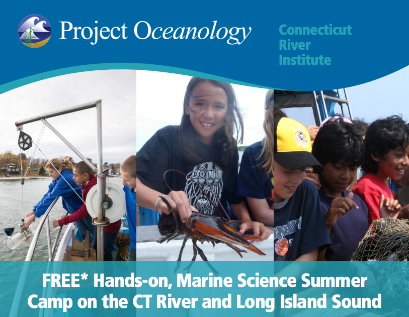 Grade 6 and Above:  2016 Summer Camps at Project Oceanology