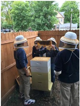 Trinfo Partnership with Hartford Magnet Trinity College Academy Brings Bee-keeping Project to Community Garden
