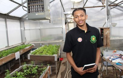 OUR SCHOOLS:  High School Students Partner with Agencies to Create Project-based Learning Social Enterprise, Herbs of Vision