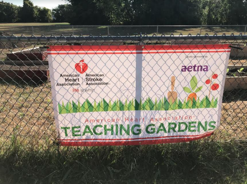 Thanks to American Heart Association and Aetna, Project-based Learning at Wish School is Blossoming