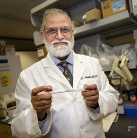 UConn Cancer Center Director to Give Seminar at Classical Magnet School October 16