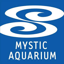 Mystic Aquarium Open for Grades 1 – 6 Summer Camps